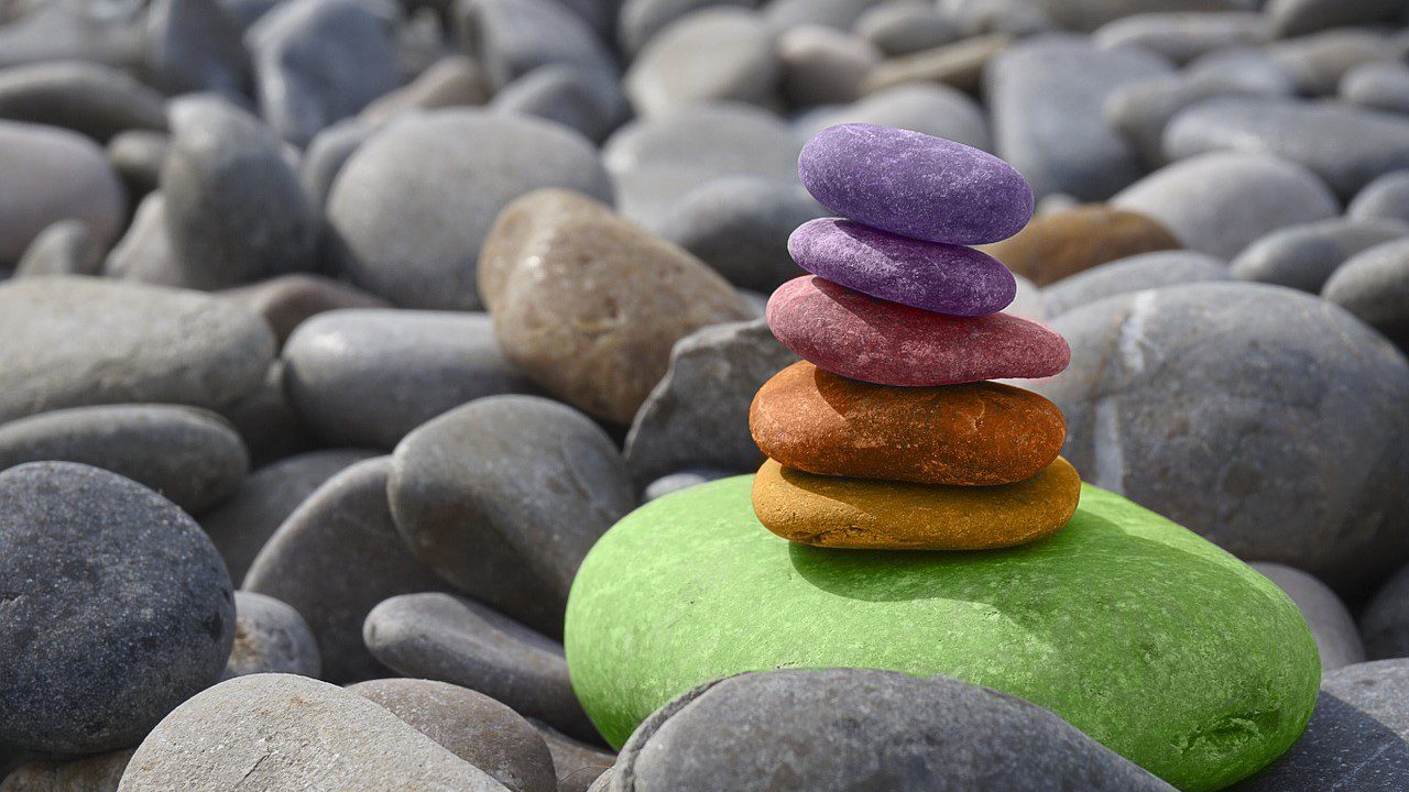 , Is your organization in balance?, Acorel